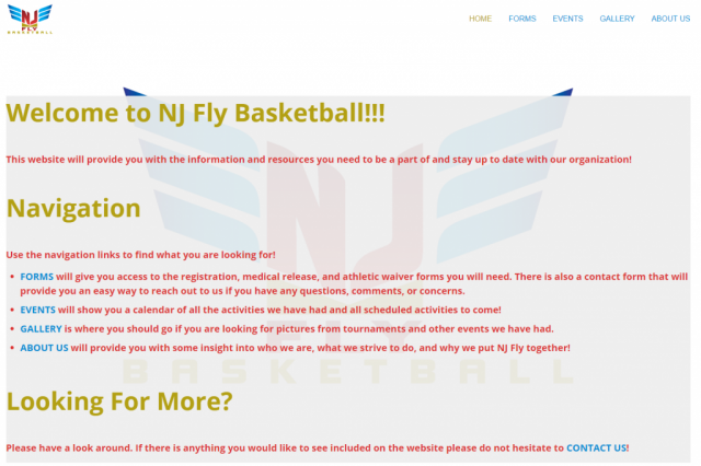 Image of NJ Fly Basketball's home page